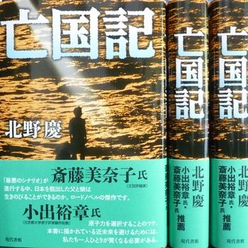 boukokuki (1024x1024).jpg